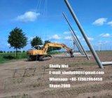 Cavo d'acciaio galvanizzato ad alta resistenza ASTM A363