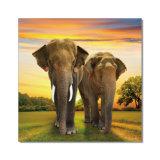印刷の絵画 -- 動物シリーズ