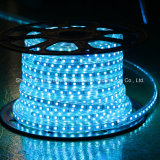 Blue Color 60LEDs SMD5050 220V IP65 LED Rope Light