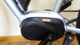 Vélo de montagne électrique de juste prix avec du MI ce En15194 d'entraînement