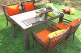 Tableau Furniture-44 extérieur de rotin de loisirs