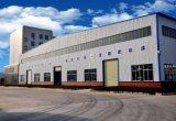 O agente indiano de Europa do russo quis para o torno e Vmc do CNC máquina de molde
