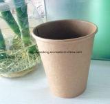 El papel de pared simple Taza, vaso de papel desechables