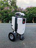 Transformable Smart электрический скутер, наружных складывающихся скутере, мобильность скутере скутер мобильности инвалидов, Smart для скутера