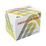 Capsule 250mg, 500mg d'Amoxicilin