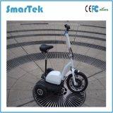 [سمرتك] أنيق [دريرد] دولية [سكوتر] ذكيّة كهربائيّة ثلاثة عجلات درّاجة ناريّة [تريك] [سكوتر] طرّاد درّاجة ثلاثية [إسكوتر] لأنّ [أوتدوور سبورت] [جإكس006ا]