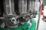 Completare la spremuta che risciacqua la linea di produzione di coperchiamento di riempimento pianta