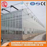 De commerciële Serre van het Blad van het Polycarbonaat van het Profiel van het Aluminium voor Groenten