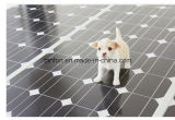 10W-300W Mono Painel Solar, Módulo de PV, sistema de painel solar