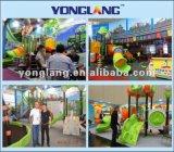 Kids (YL-W015)のための2015年のココアSeries Featured Outdoor Playground Set