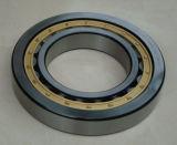 Le roulement Nu Nu232 M234 Nu236 Cage de roulement à rouleaux cylindriques en laiton
