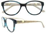 최신 디자인 소녀 Dimond를 가진 최고 아세테이트 안경알 프레임