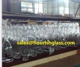 Glasbecken/Flaschen/Gläser/Behälter/Krüge