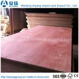 madera contrachapada comercial laminada chapa natural de 4X8 Bintangor