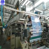 PE 보호 피막 (스테인리스 위원회, ACP 장, Windows, 유리제 표면)의 중국 최고 공급자