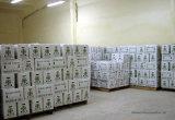 El jengibre fresco en China con alta calidad