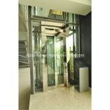 Sightseeing를 위한 Glass Cabin를 가진 파노라마 Elevator