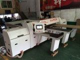 Луч CNC управлением компьютера увидел машинное оборудование Woodworking автомата для резки