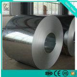 Secc 20/20 / électro-galvanisé acier en bobines de galvanisation à froid