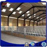 Einfache Installations-vorfabrizierte neue Stahlgebäude für Vieh-Bauernhof-Haus