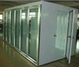 Congélateur d'affichage commercial et de stockage en Chambre froide Congélateur congélateur