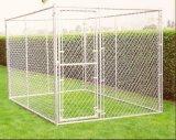 Grande gabbia galvanizzata esterna del cane del cane Kennel/6FT della rete fissa di collegamento Chain