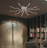 Nuova lampada del soffitto della decorazione LED della casa di disegno (MX15004-14A)
