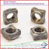 Les écrous/taille différente des écrous en acier au carbone/ Square, écrou à souder les écrous carrés