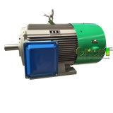 Настраиваемые 20квт 3 фазы постоянного магнита синхронный генератор