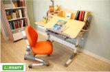 Sale Children Desk를 위한 친절한 Environment Height Adjustable Child Furniture