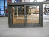 Double vitrage Aluminium / Alliage d'aluminium Salle de bains Fenêtres coulissantes