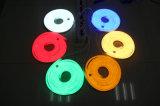 최고 호리호리한 12V/24V LED 네온 코드 빛