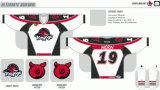 Customized Homens Mulheres Crianças Liga de Hóquei Americana Rockford Icehogs 2007-2013 Hóquei no Gelo Jersey