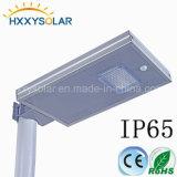 Resistente al agua 12W LED solares de Jardín de Luz con el nivel de protección IP65