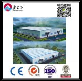 High quality Customized Steel Structure Warehouse (BYSS022)