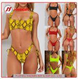 2 Leopard Lady Sexy Bikini solide d'impression couleur dentelle de bandage Bikini