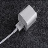AppleのiPhone USBの充電器のための立方体の壁の充電器5W