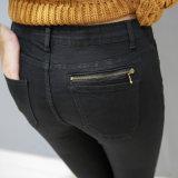 Neue Form-hohe Taillen-dünne Sitz-Jeans für Frauen