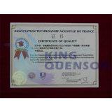 King Quenson Ga3 Ácido Gibberellic 90% Tc (20% SP, 20% TB, 10% SP, 10% TB, 4% CE)