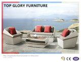 PE as medulas e mobiliário de alumínio, sofá de vime exterior (TG-024)