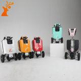 Roue 3 pliant le scooter électrique avec la portée pour les handicapés