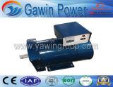 Élément générateur de puissance de générateur synchrone monophasé d'AC de la série 2kw de rue de de petite capacité