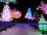 Garanzia di qualità di prezzi più poco costosi di Yaye migliore 2 anni albero impermeabile di /LED LED IP65 dell'indicatore luminoso del ciliegio di approvazione di RoHS & di Ce