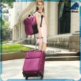 Bwf1-201柔らかいエヴァの荷物袋のアメリカの傾向のトロリー荷物のスーツケース