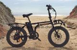 Bike 20inch складной e с E-Bike /Folding мотора шестерни Burhsless (SY-E2007)