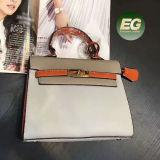 2017 de Nieuwe Zakken van de Schouder van de Vrouwen van de Handtas In het groot Pu van de Dames van de Manier van het Ontwerp Trendy van de Leverancier Sy8543 van China