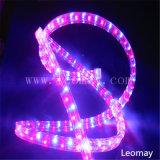 LEDロープライトのあたりで変更する結婚式の装飾2ワイヤー