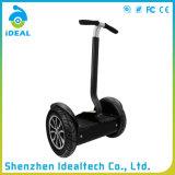 Vespa eléctrica de la movilidad portable de la rueda 800W 2