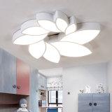 Hierro sencillo moderno Art LED lámpara de techo