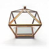 Het hete Geometrische Glas Terrarium van de Verkoop voor Bloem